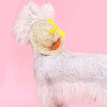1 Stueck Hund Sonnenhut mit Karotte Dekor