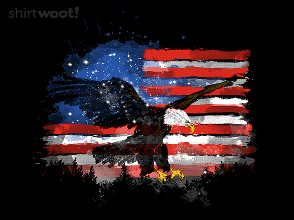 American Sunset Ii T Shirt