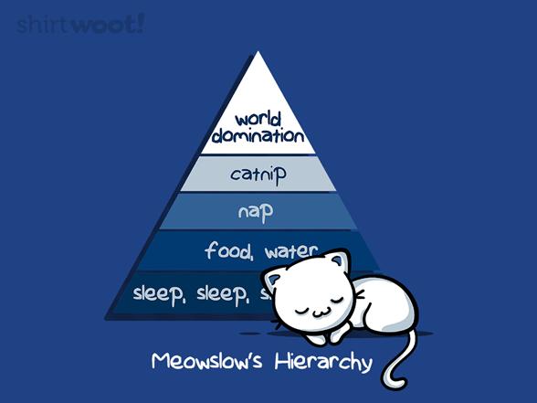 Cat Needs T Shirt
