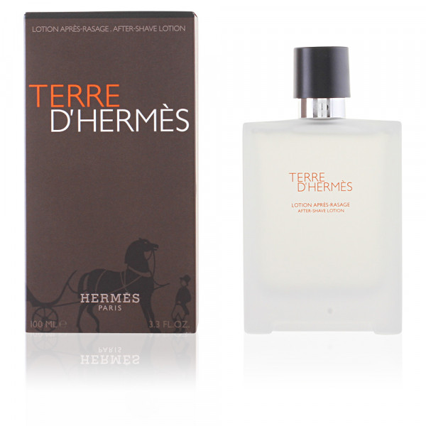 Terre dHermes - Hermes Locion aftershave 100 ML