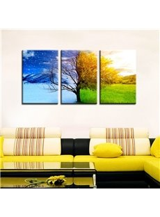 11.8*17.7in*3 Pieces Creative Tree Hanging Canvas Waterproof and Eco-friendly Wall Prints