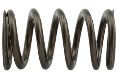 Industrial Injection PDM-160-1484S-24 110 LBS Single Valve Spring Set