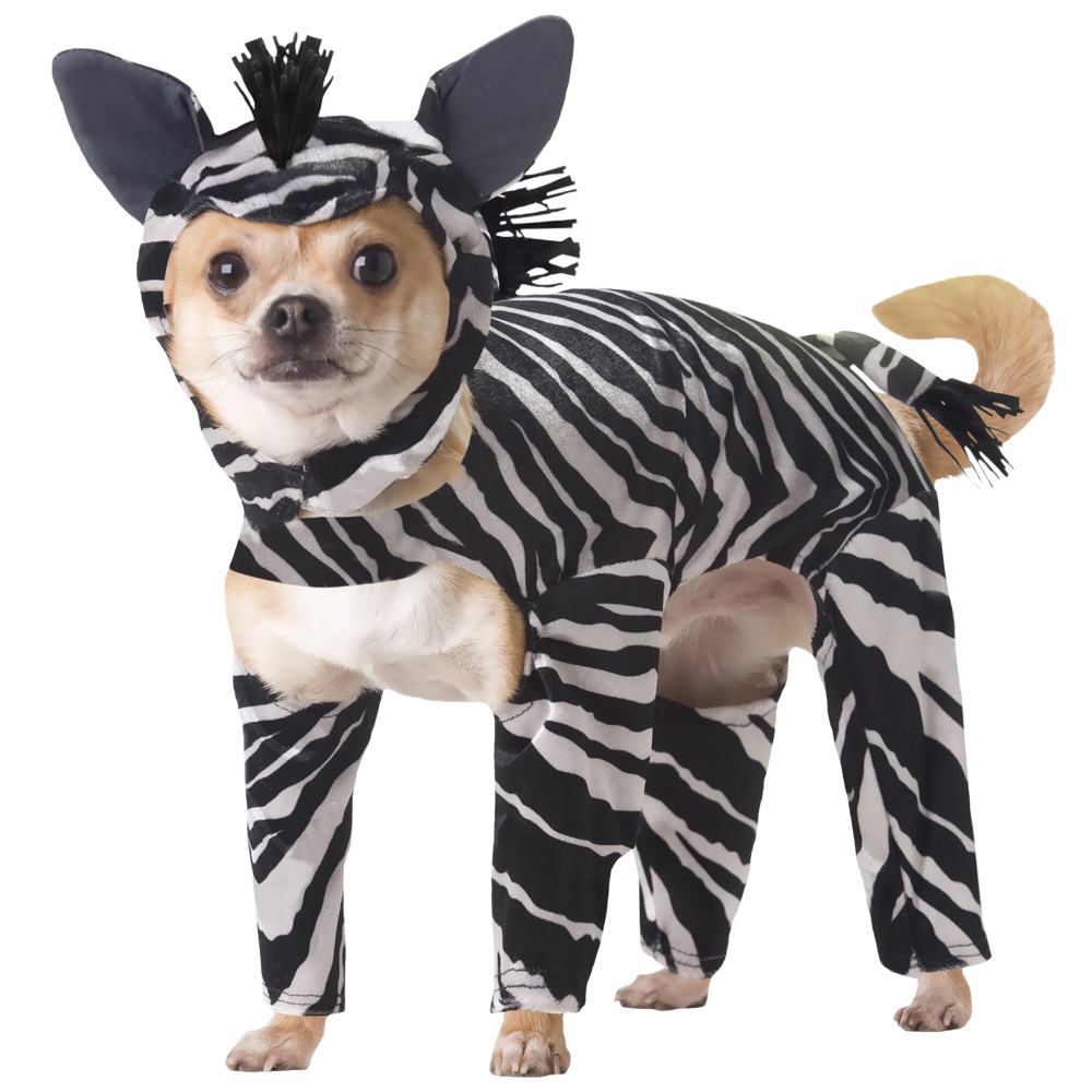 Animal Planet Zebra Dog Costume - X-Small