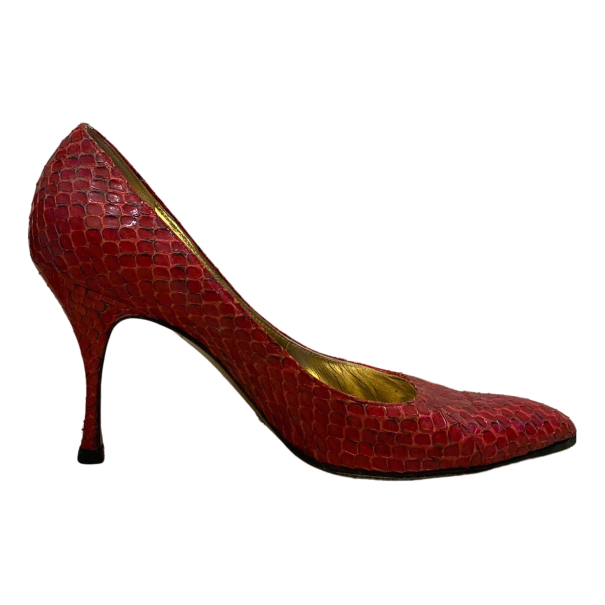 Dolce & Gabbana \N Pumps in  Rot Python