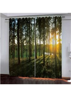3D Modern Decor Blackout Dust-proof Curtains with Romantic Sunset and Deciduous Forest Scenic Image
