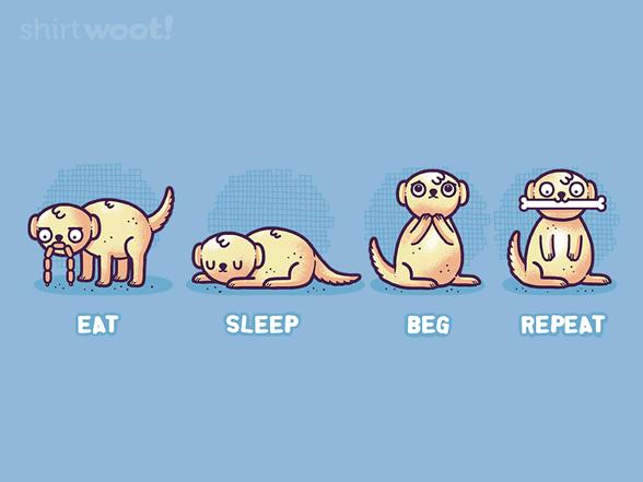 Eat Sleep Beg Repeat T Shirt
