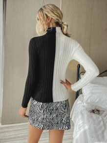 Colorblock Ribbed Knit Turtleneck Spliced Sweater