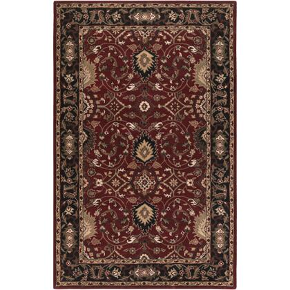Caesar CAE-1031 4' x 6' Rectangle Traditional Rug in