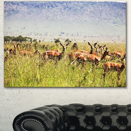 Designart Beautiful Antelope In Grass African Landscape Canvas Art Print, One Size , Green