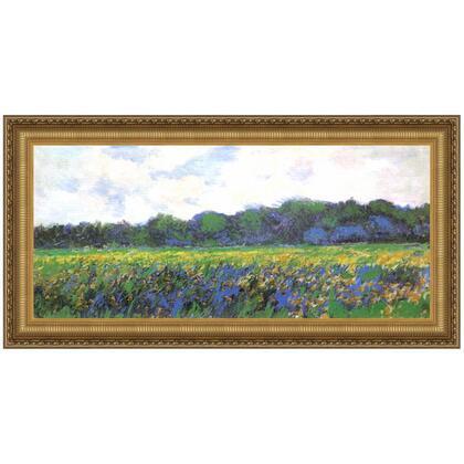DA4123 41X22.5 Iris Field At Giverny