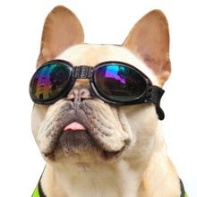 1 Stueck Winddichte Brille fuer Hunde