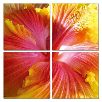 VGSC-SC-9637ABCD Modrest Hibiscus 4-Panel Photo on