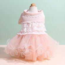 1pc Double Lace Dog Dress