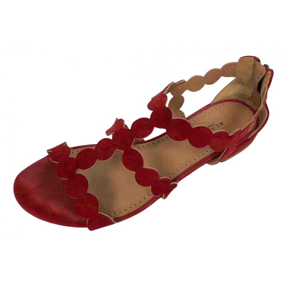 Alaia \N Sandalen in  Rot Veloursleder
