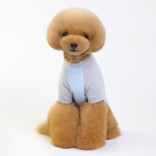 1pc Dog Two Tone Top