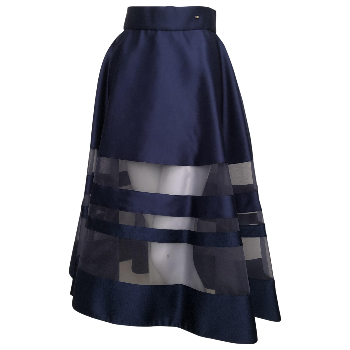 Elisabetta Franchi \N Blue skirt for Women 42 IT