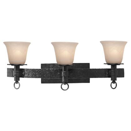 Americana 4203B/1305 3-Light Bath in Black with Smoked Taupe Standard Glass