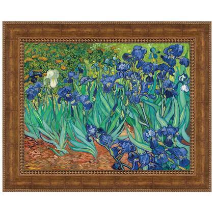 DA4731 20X16 Irises 1889