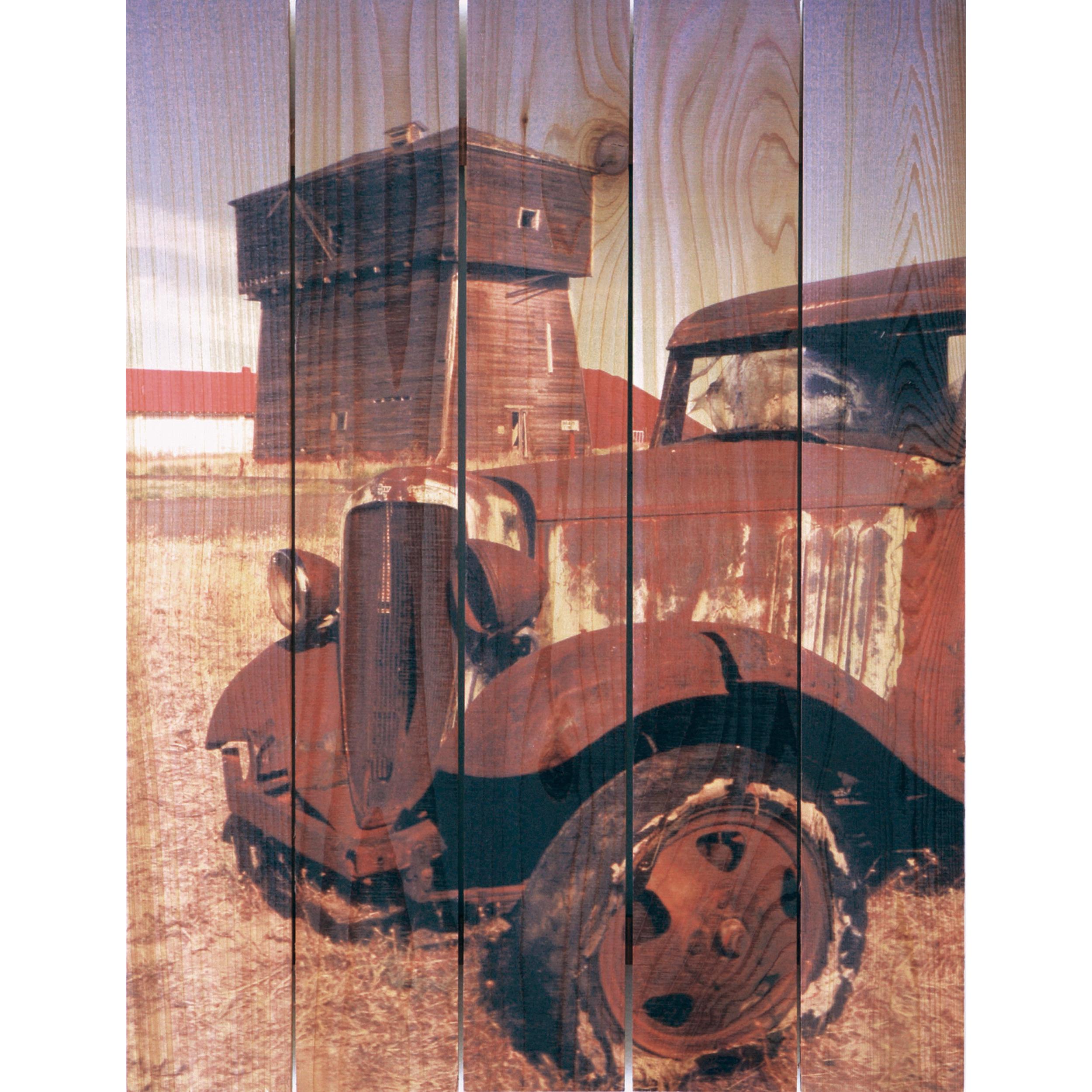 Daydream Gizaun Cedar Wall Art, Rust Bucket, 28
