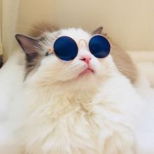 1 Stueck Sonnenbrille mit runden Glaesern fuer Katzen