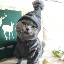 1pc Pom Pom Decor Cat Hoodie
