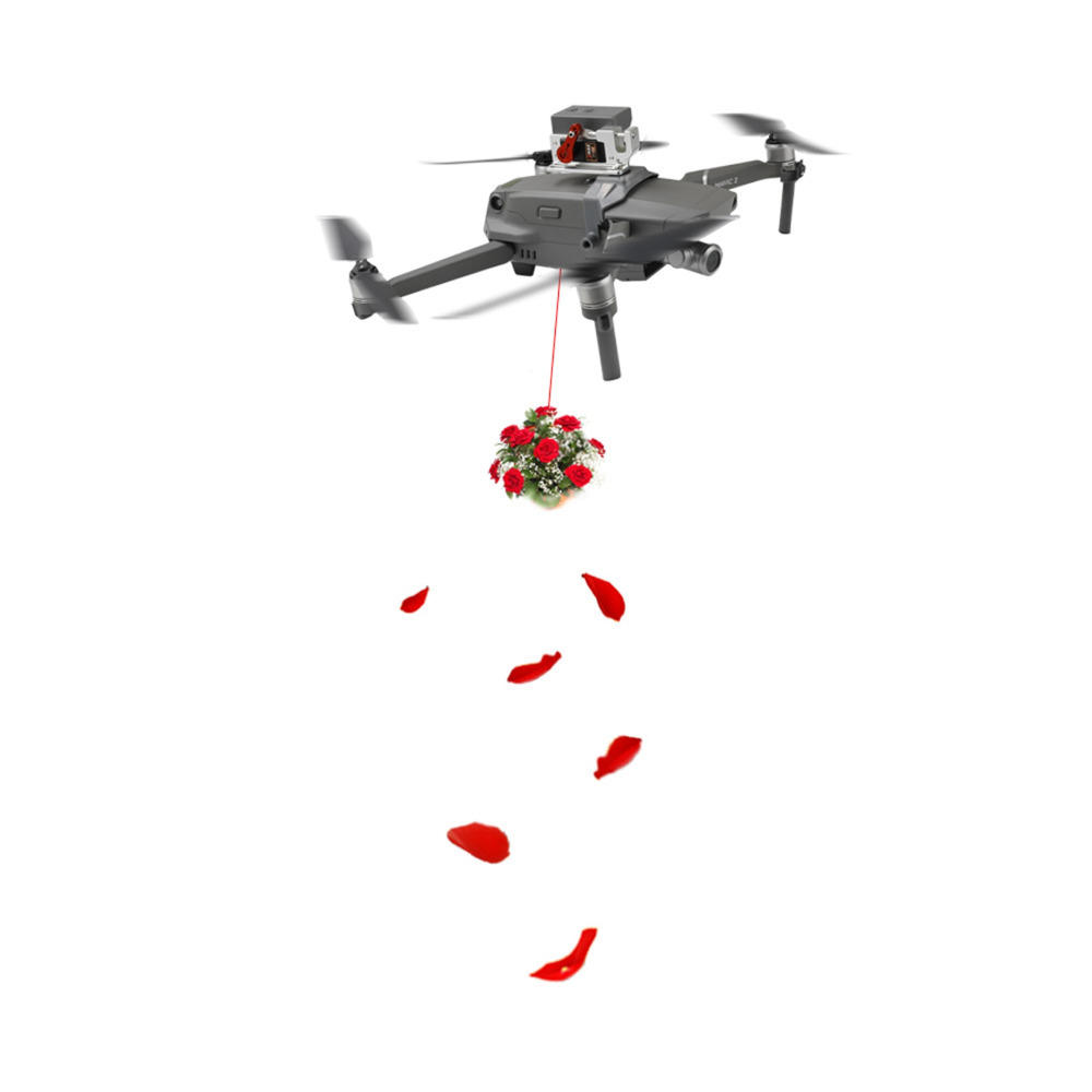 RCGEEK Air Thrower Fishing Wedding Ring Gifts Delivery Drop System for DJI MAVIC 2 Pro/Zoom RC Drone