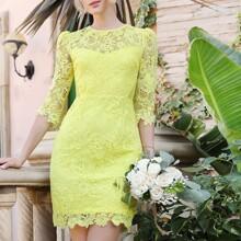 Sheer Mesh Back Guipure Lace Dress