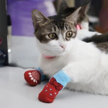 4pcs Bow Print Cat Sock