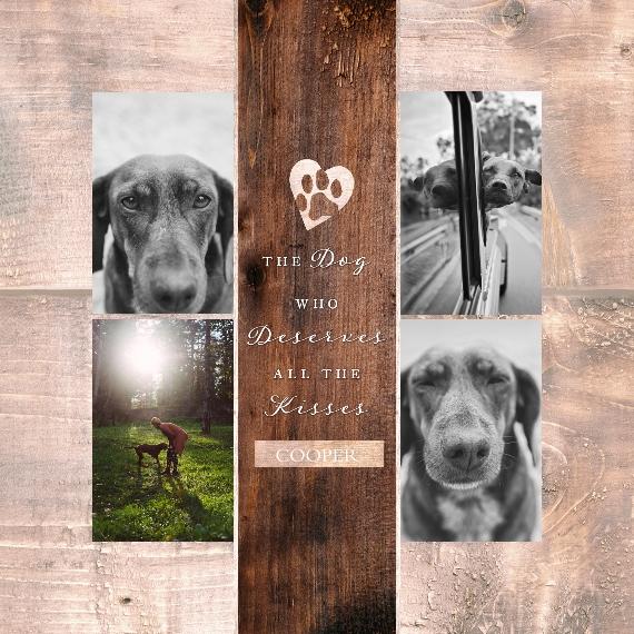 Pet Canvas Print, 12x12, Home Décor -The Good Dog