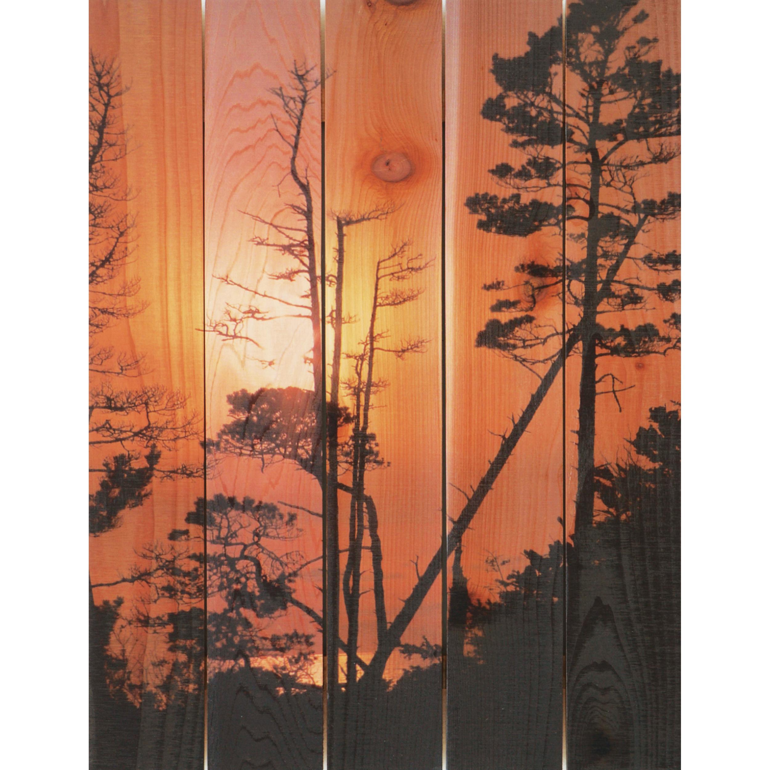 Daydream Gizaun Cedar Wall Art, Ocean Forest, 28