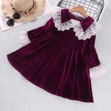 Toddler Girls Contrast Lace Scallop Velvet Babydoll Dress