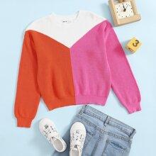 Pullover mit rundem Kragen und Farbblock