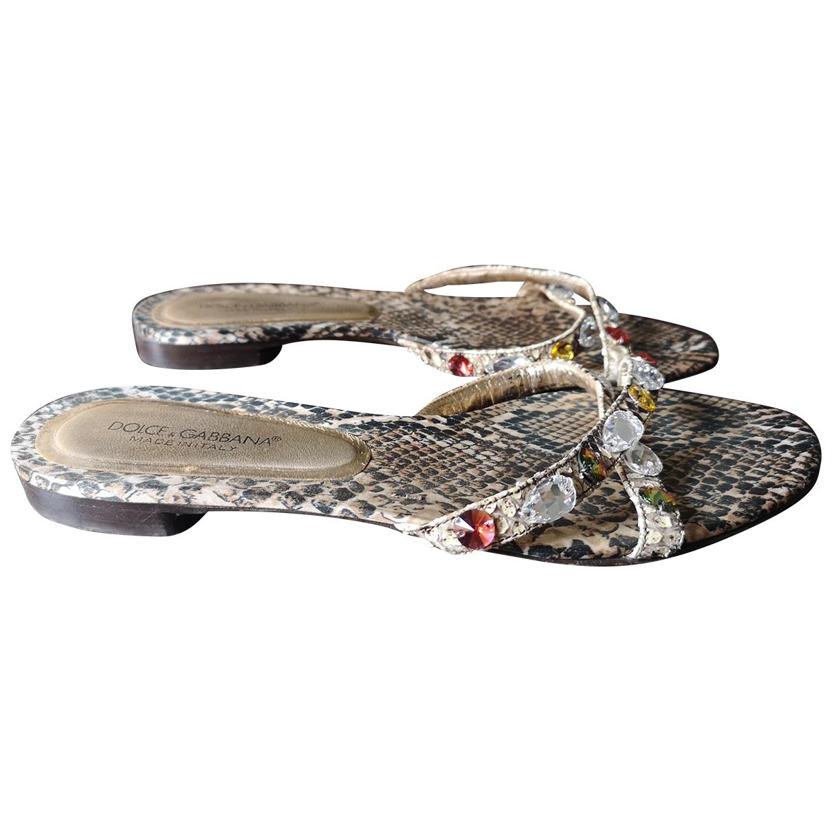 Dolce & Gabbana \N Sandalen in  Bunt Krokodil