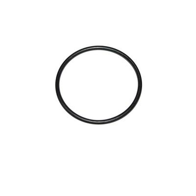 Omix-ADA Fuel Sending Unit O-Ring Gasket - 17730.01
