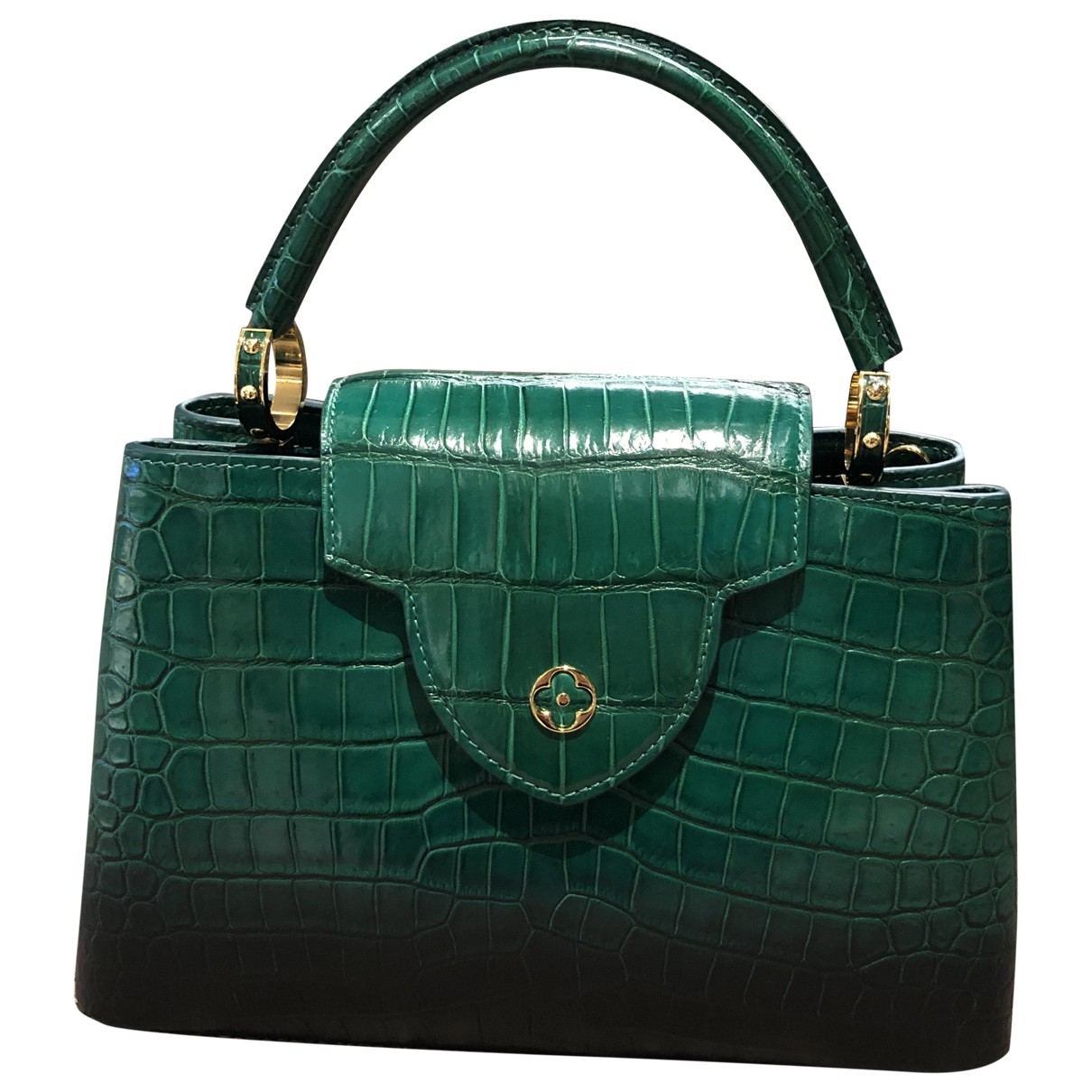 Louis Vuitton Capucines Green Crocodile handbag for Women \N