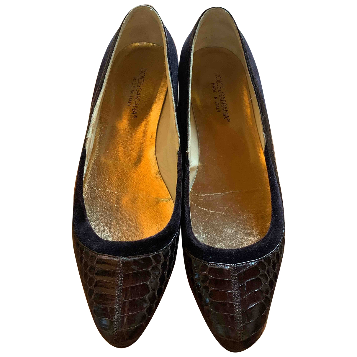 Dolce & Gabbana \N Brown Exotic leathers Ballet flats for Women 39 EU