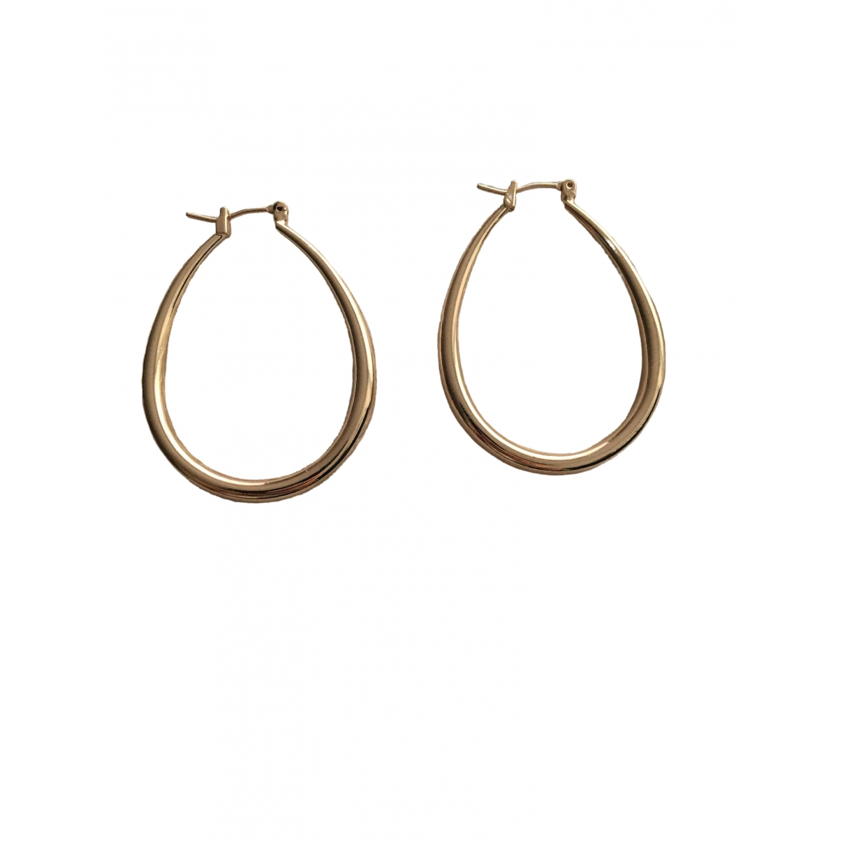 Non Signé / Unsigned Créoles Gold Steel Earrings for Women \N