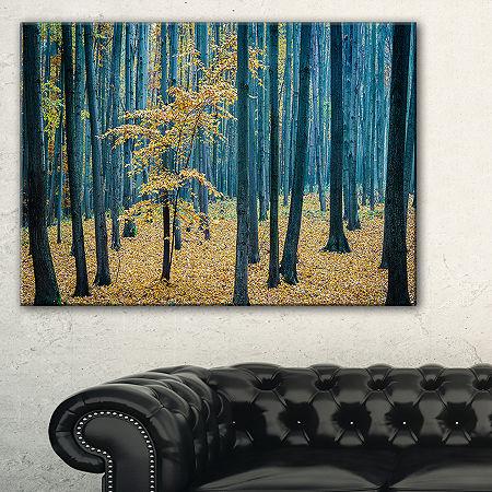 Designart Dense Autumn Beach Forestwork Canvas Art, One Size , Red