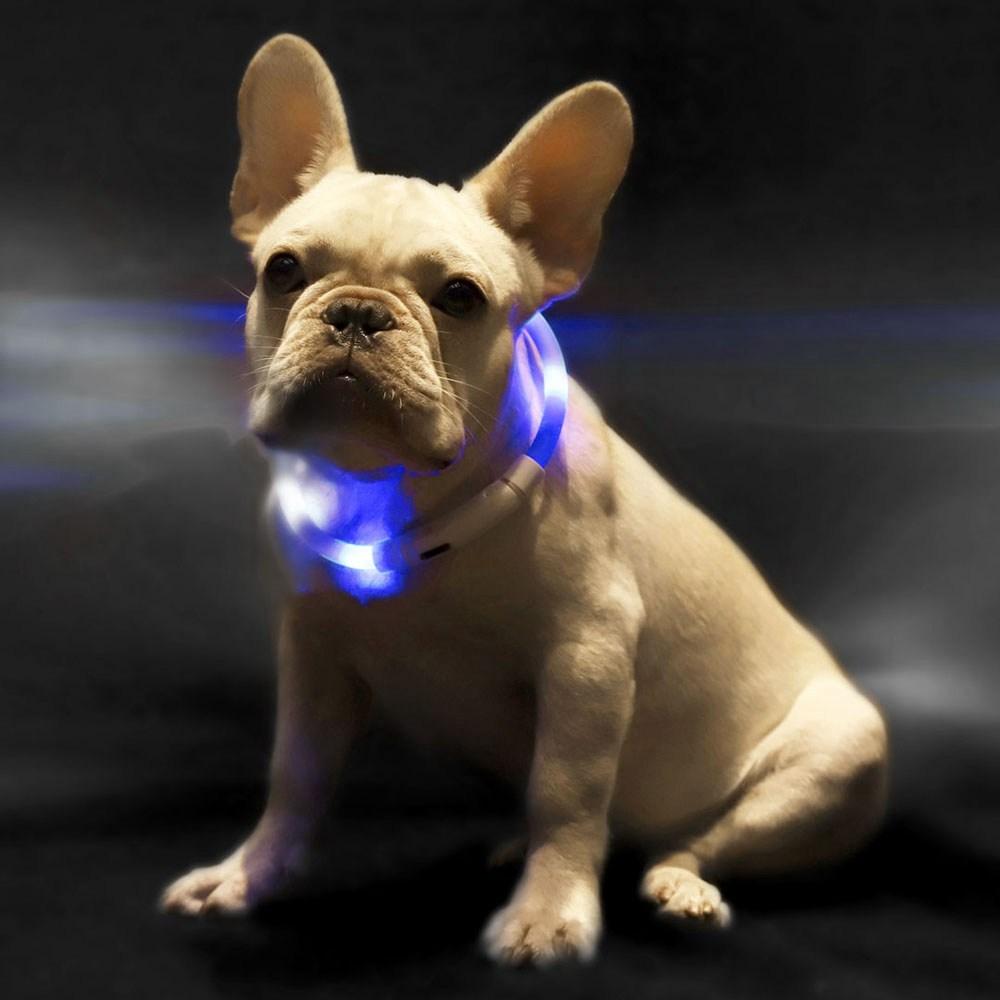 Small Beast Star XL81-5001 Dog Collar Luminous Adjustable Waterproof For Pet - Blue
