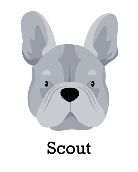 Pet 16x20 Poster, Home Décor -French Bulldog 5