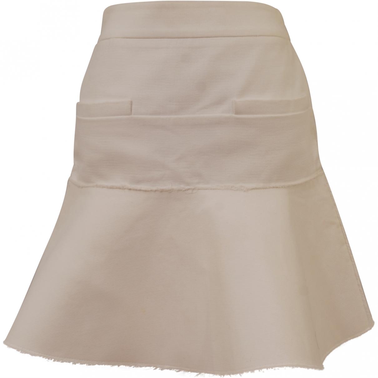 Celine \N White Cotton skirt for Women 36 FR
