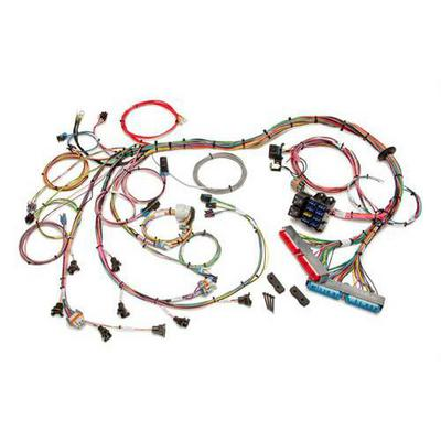 Painless Wiring Fuel Injection Wiring Harness - 60508