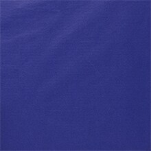 Blue Premium Tissue Paper Colored - 480-15 X 20 - by Paper Mart