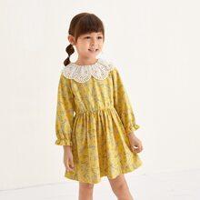 Toddler Girls Schiffy Panel Floral Print Dress