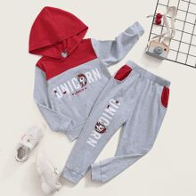 Toddler Girls Letter Graphic Color Block Hoodie & Sweatpants