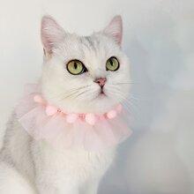 Pom Pom Decor Mesh Cat Necklace