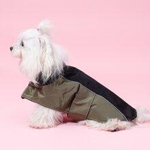 Colorblock Dog Jacket
