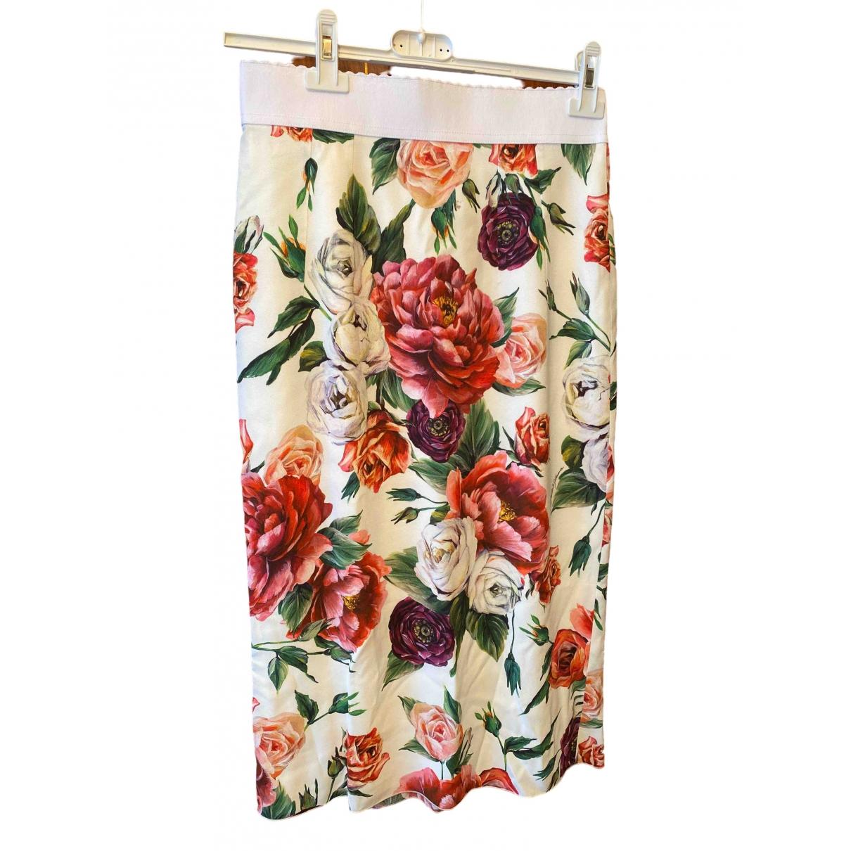 Dolce & Gabbana \N Multicolour skirt for Women 40 IT
