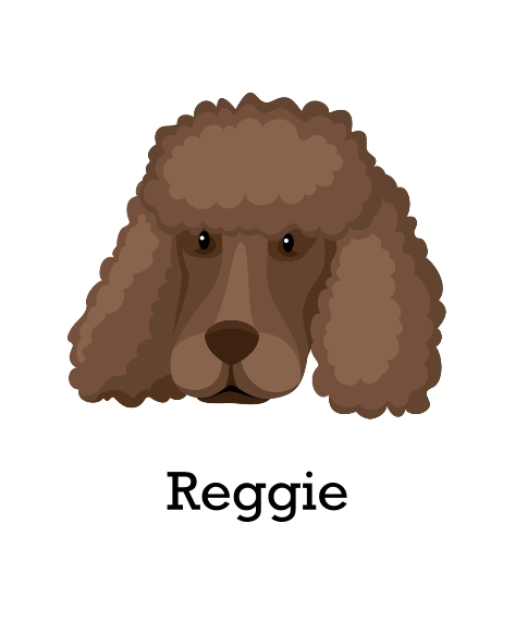 Pet Framed Canvas Print, Chocolate, 16x20, Home Décor -Poodle Shaved