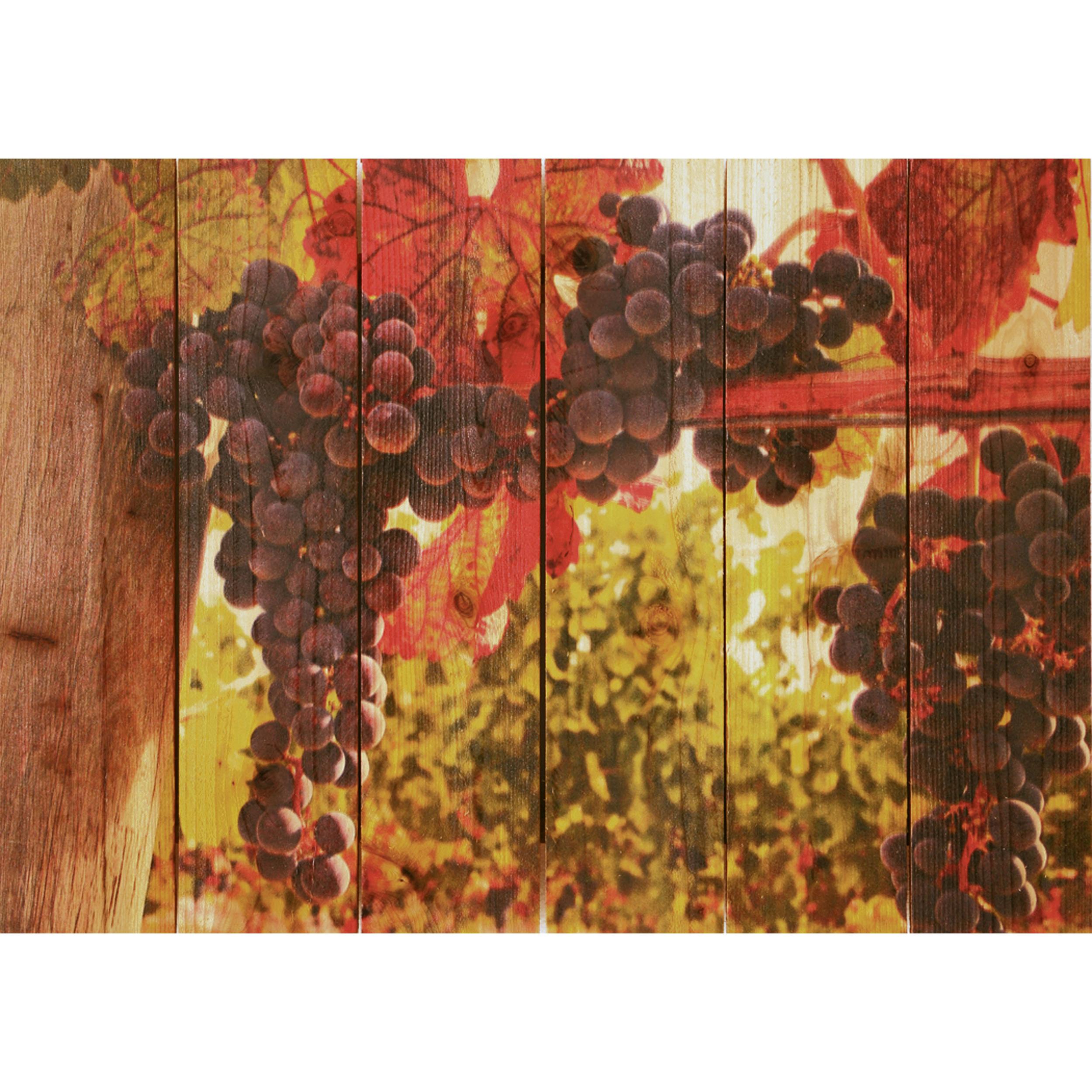 Daydream Gizaun Cedar Wall Art, Old Vines, 22.5